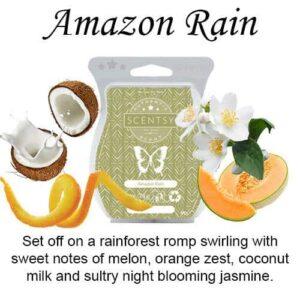 Amazon Rain Scentsy Bar