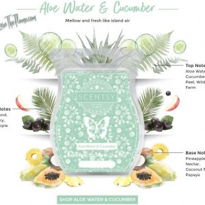 Aloe Water & Cucumber Scentsy Bar