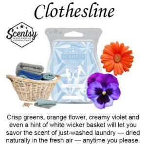 Clothesline Scentsy Bar