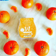 Oodles of Orange Scentsy Bar - Discontinuing in July 2021