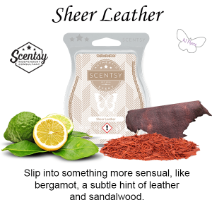Sheer Leather Scentsy Bar - Discontinuing in July 2021