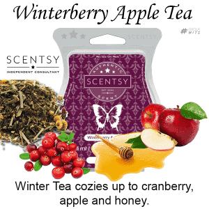 Winterberry Apple Tea Scentsy Bar