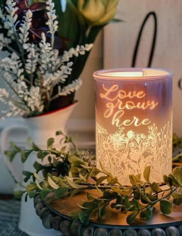 Cast – Pink Scentsy Warmer with Spring Pack Inserts