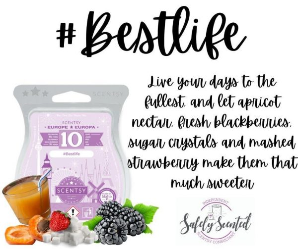Best Life Scentsy Wax Bar