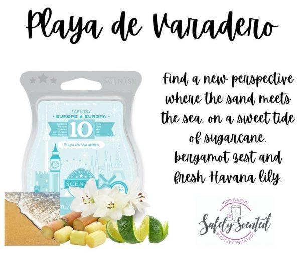 Playa De Varadero Scentsy Wax Bar
