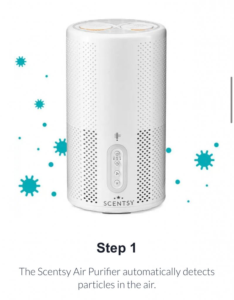 Introducing the Scentsy Air Purifier
