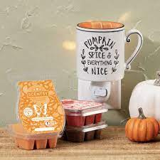 everything nice mini warmer scentsy